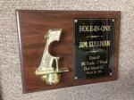 Hole in One Golf Plaque Golf Trophy Awards